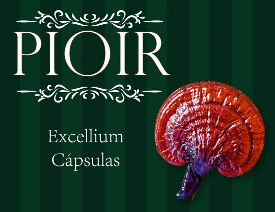 Excellium-01