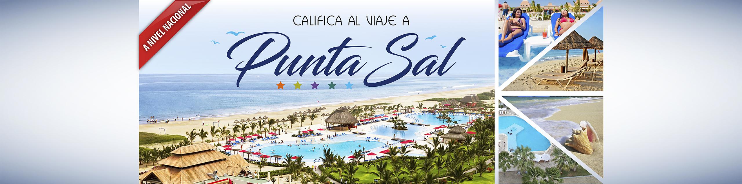 WEB-PUNTA-SAL